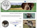 Fort Detroit German Wirehaired pointer club michigan