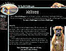 Website Designs for Breeders, Kennels, Veternarians, Groomers, Handlers