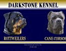 Darkstone Kennel - Rottweilers and Cane Corso