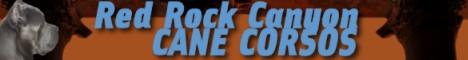 Website Designs for Breeders, Kennels, Veternarians, Groomers ...